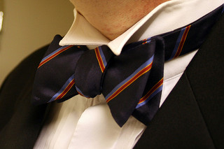 Bowtie - Attribution: Pete, Project 365 #311 - Original Photo